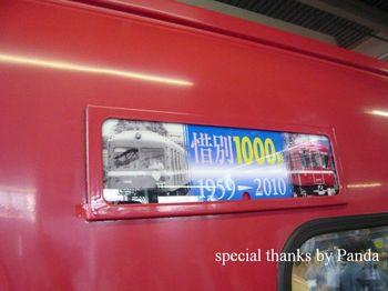 P1000983.JPG